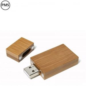 USB sticks bamboe Darwin-0